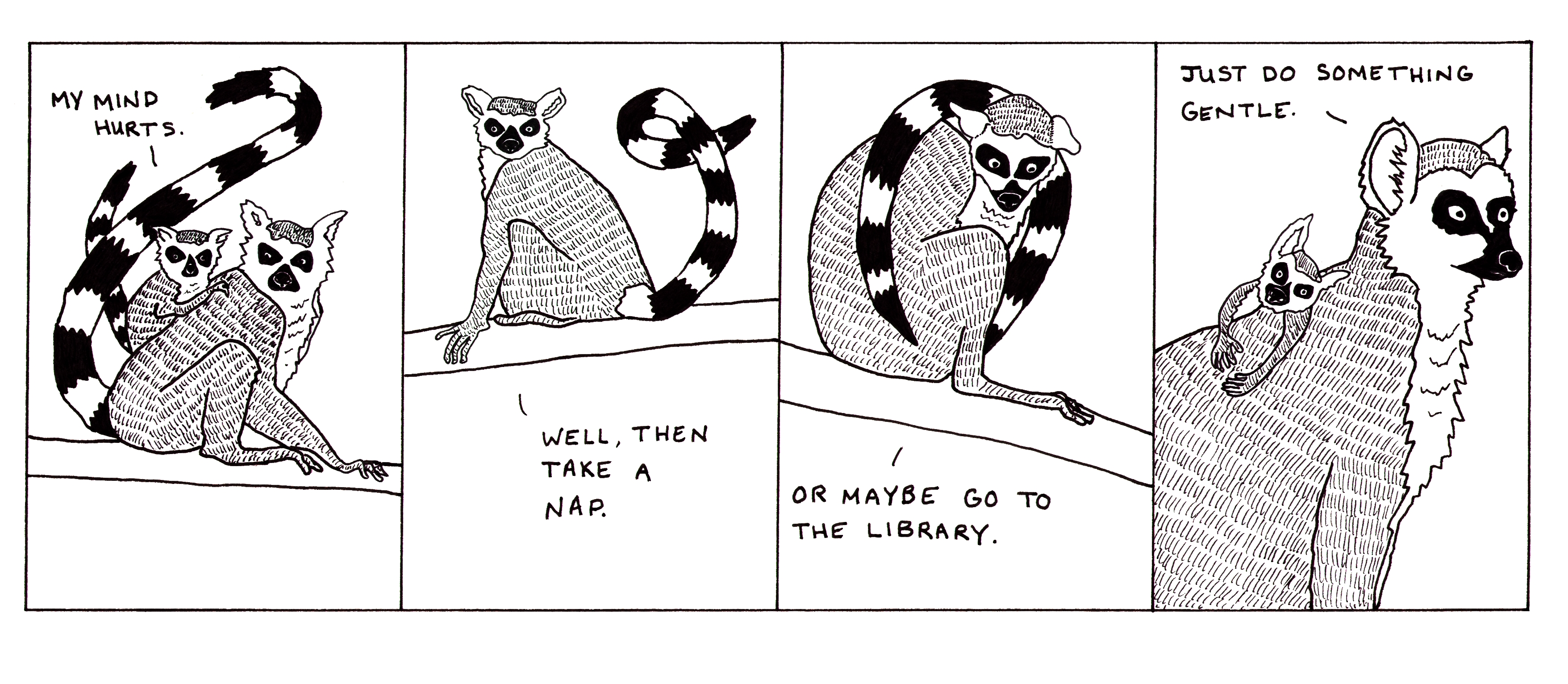 Naps, libraries, snowfalls, very soft sweaters.