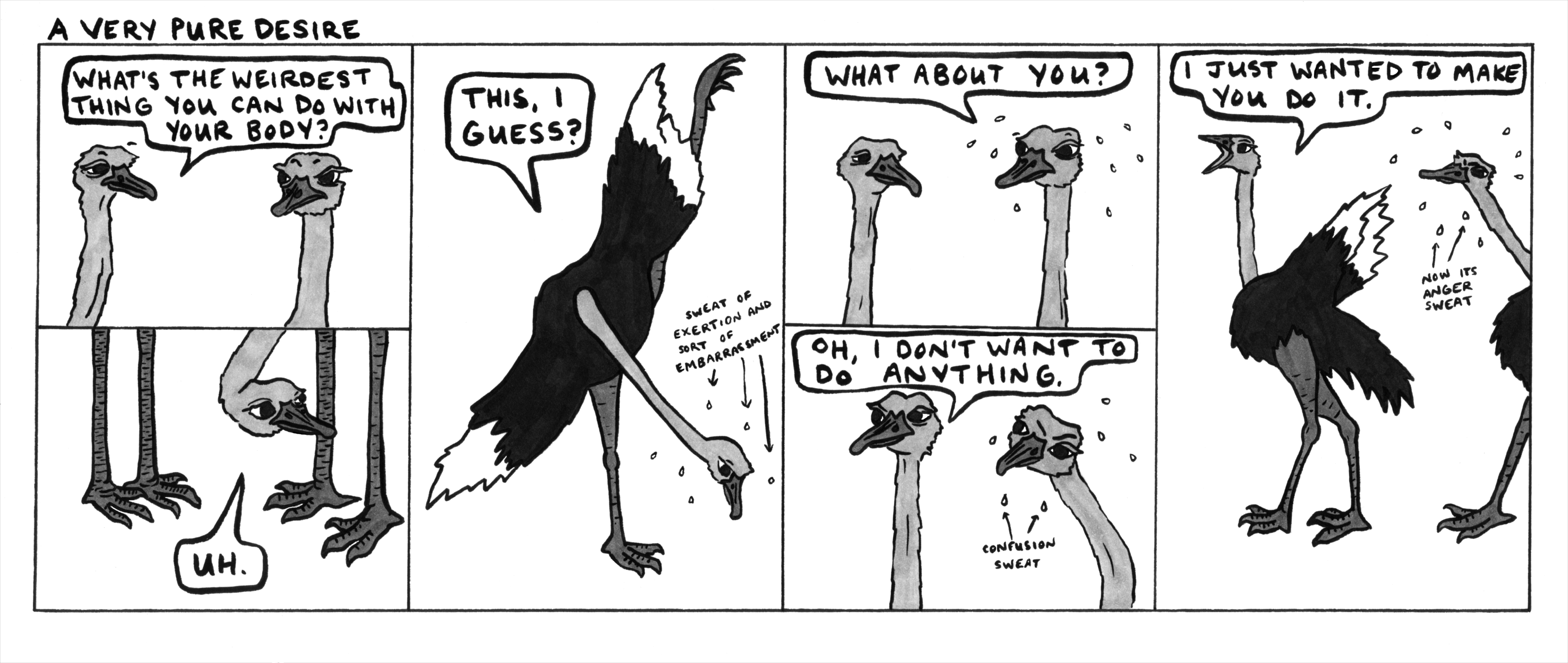 Dave wanted me to draw a road runner this week but I think ostriches are funnier for this particular concept